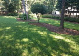 Are you on a schedule with us for weed control?